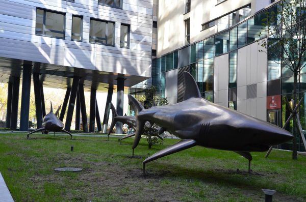 Michal Gabriel - Three bronze sharks - sharks in place